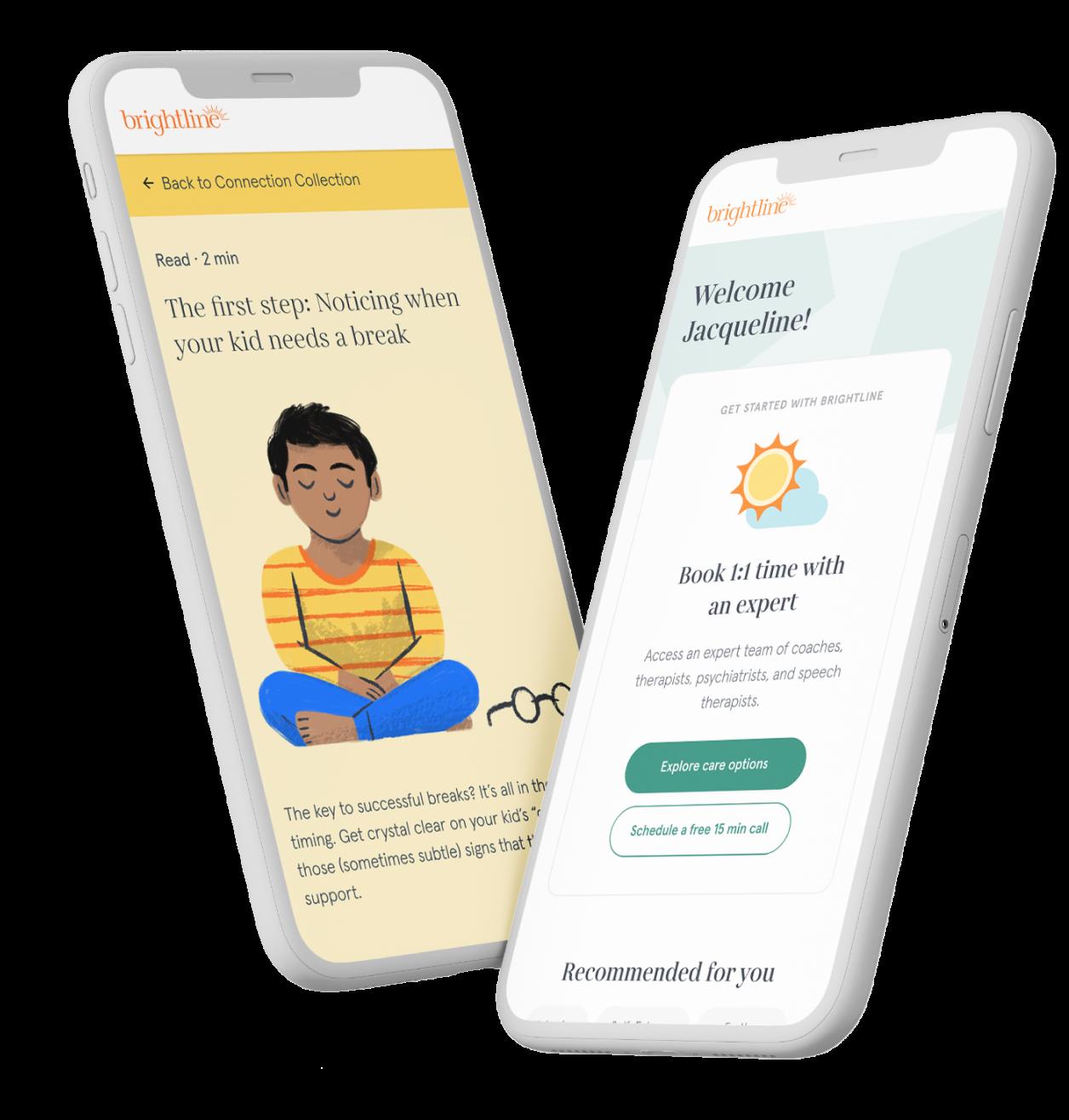 Two phones with Brightline website
